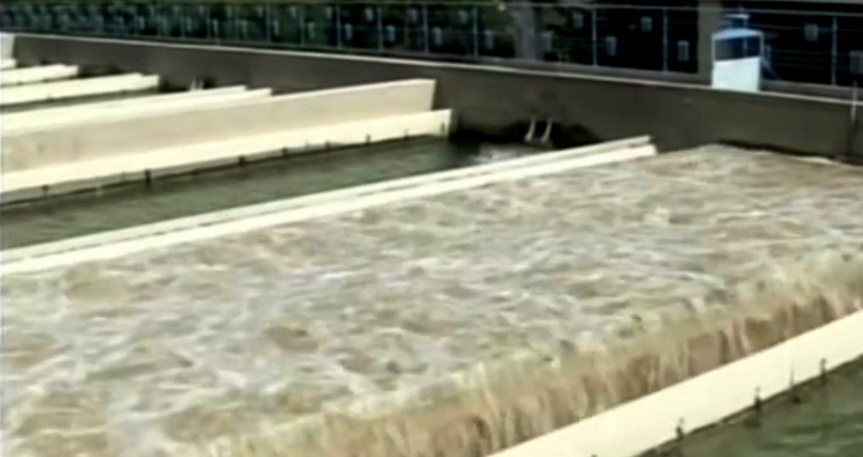 acqua-palermo-scansano