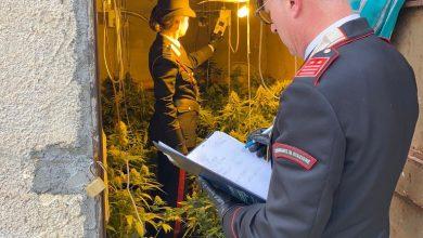 Carabinieri - Anti droga