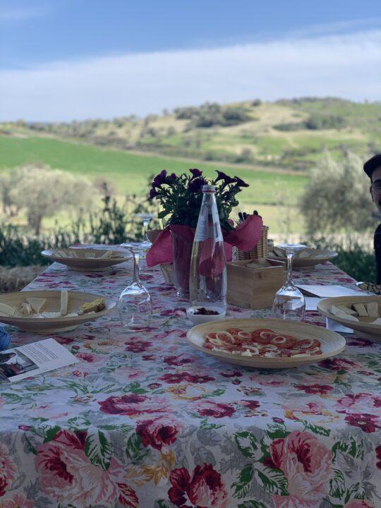 Terre del Grano – Fattoria biologica Siciliana