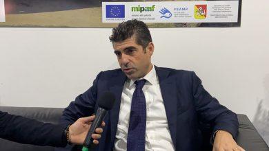 Alberto Pulizzi